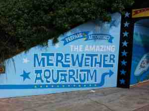 Merewether Aquarium